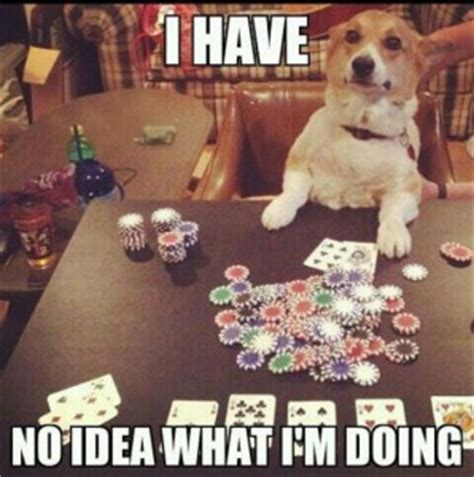 Casino Meme - 8 types of gamblers in memes by droid slots