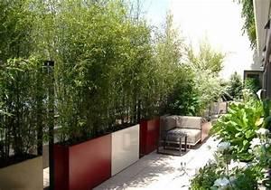 sichtschutz balkon bambuspflanzen pflanzkuebel gross klare With französischer balkon mit garten steine groß