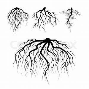 Tree Underground Roots Vector  Plant Underground Roots Set