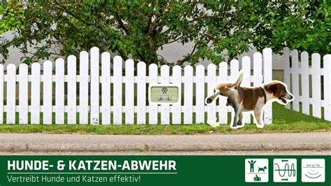 katzen aus garten vertreiben gardigo hunde katzen abwehr