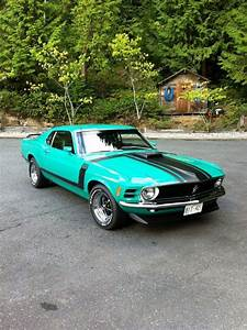 Ford Mustang All Types 80   1970 ford mustang, Ford mustang boss, Ford mustang