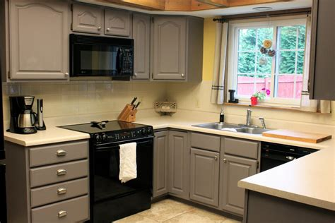 grey kitchen cabinets with astonishing grey kitchen cabinets the futuristic color