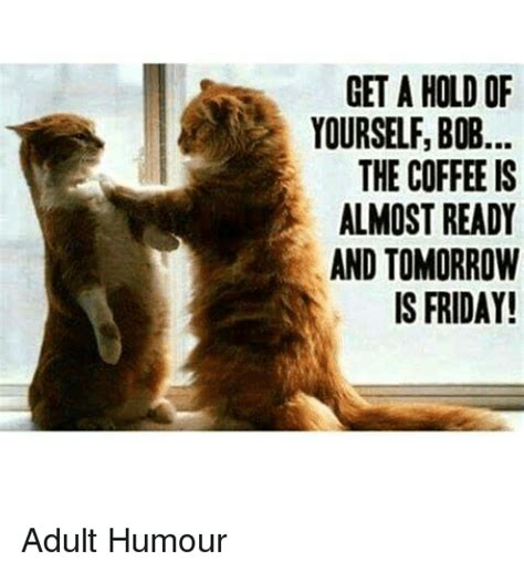 Adult Friday Memes - get a hold of yourselfbob the coffee is almost ready and tomorrow is friday adult humour