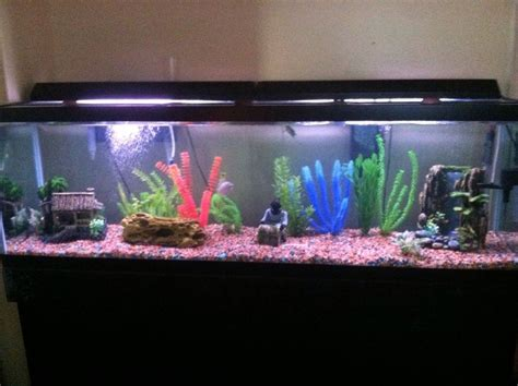 fish aquariums two fish tanks ebay