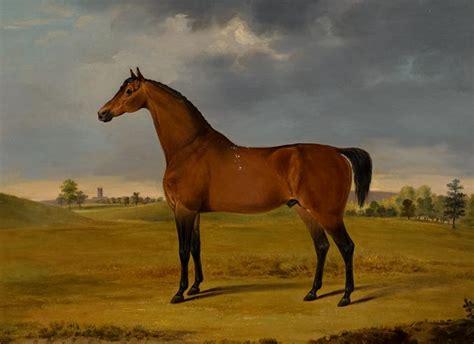 horse oil painting  gwynn