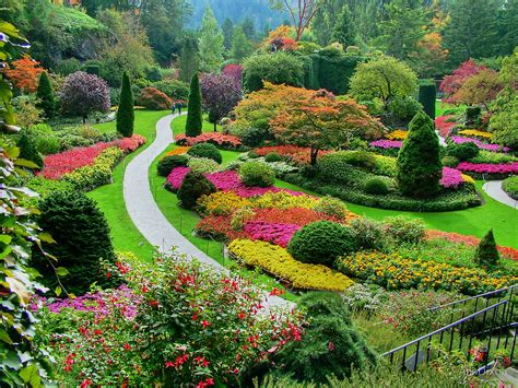 garden in fall quot butchart gardens bc canada in the fall quot by anndixon redbubble