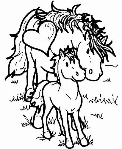 Horse Coloring Pages Printable Preschoolers Horses Sheets