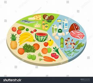 Food Circle Diagram Fruits Vegetables Meat Stock Vector