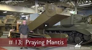 David Fletcher Tank Chats ep13 Praying Mantis | MMOWG.net