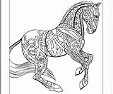 Horse Coloring Pages Hard Animal Horses Printable Colouring Zentangle Draft Sheets Cute Print Books Adults Getcolorings Comments Getdrawings Template sketch template