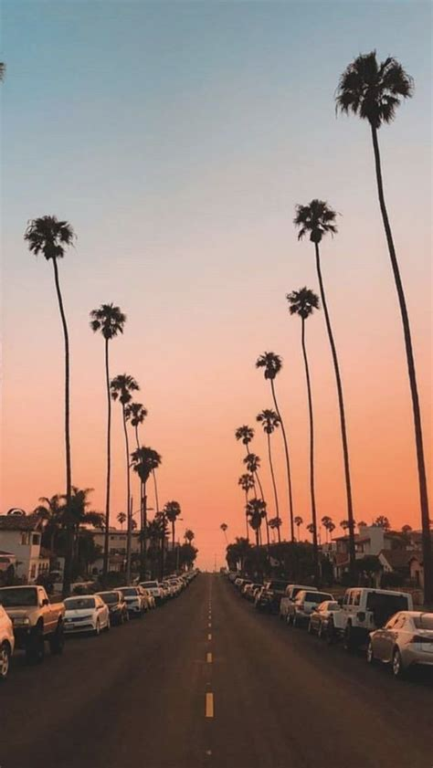 41 summer aesthetic iphone wallpaper