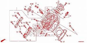 Cylinder  Cylinder Head For Honda Rs 150 R Repsol 2017   Honda Motorcycles  U0026 Atvs Genuine Spare