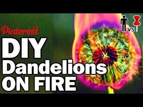 diy dandelions  fire man  pin  youtube
