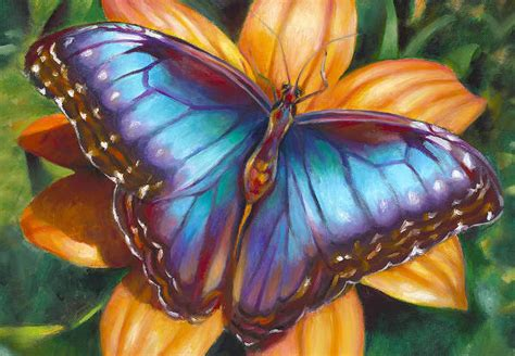 beautiful butterfly painting ideas  premium