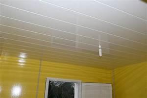 lambris pvc pour plafond meilleures images d39inspiration With lambris pvc pour cuisine