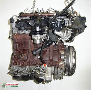 Ford Transit 2 2 Tdci Zahnriemen : ricambio motore ford transit 14 2 2 tdci 74kw drfb ~ Jslefanu.com Haus und Dekorationen