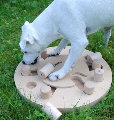 trixie intelligenzspielzeug dog activity movewin fuer