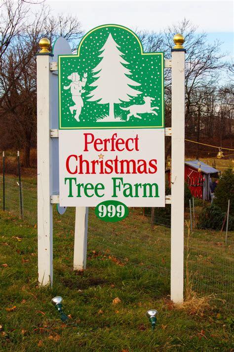 directions perfect christmas tree farm