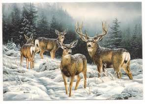 judy s postcards plus deer christmas card looks just like what visited our house dec 4