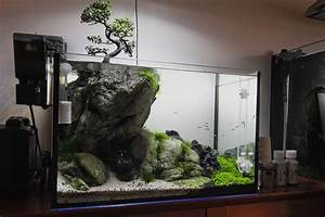 Aquarium Einrichten 60l : 5 strange aquariums that are clever quirky and just ~ Michelbontemps.com Haus und Dekorationen