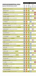 Hairstyel01 How To Apply Essential Oils Reference Chart