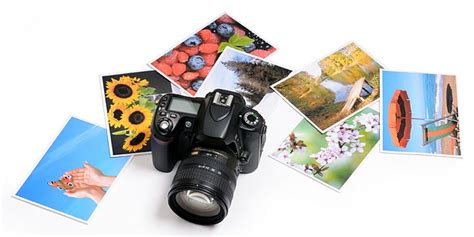 photography information guide   website links