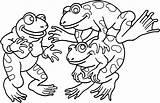 Frog Printable Sheets Sheet Freecoloringpages Via Activity sketch template