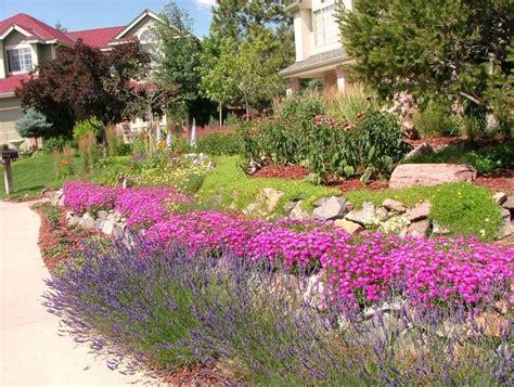 Welche Pflanzen Für Steingarten pflanzen steingarten sonnig wohn design