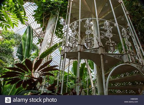 Kew Gardens Palm House, Large Greenhouse, Interior View