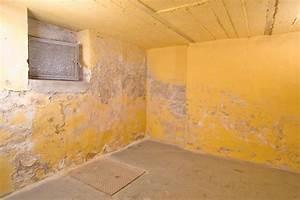 Feuchtigkeit Im Mauerwerk Beseitigen : feuchter keller isotec ~ Watch28wear.com Haus und Dekorationen