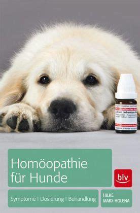 homoeopathie fuer hunde von hilke marx holena buch
