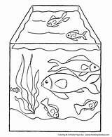 Coloring Fish Pet Tank Detailed Dog Honkingdonkey Aquarium sketch template
