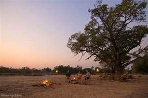 5 Reasons Why Luangwa Bush Camping Is The Ultimate Digital