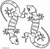 Lizard Coloring Pages Gecko Printable Realistic Cute Sheets Cool2bkids Frilled Desert Animal Preschool Bestcoloringpagesforkids Python Ball Geckos Getcolorings Clipartmag Drawing sketch template