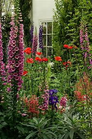 English Cottage Gardens Plants and Flowers