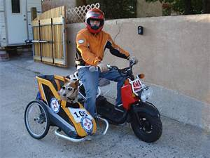 MOTORCYCLE 74: Scooter sidecar dog - home made | sidecar ...