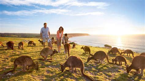 australia tourism bureau guide to kangaroo island south australia tourism australia