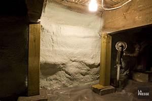 Cave De Service : comment r nover la cave de service carole thibaudeau ~ Premium-room.com Idées de Décoration