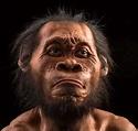 Homo naledi: New Species of Human Ancestor Discovered ...