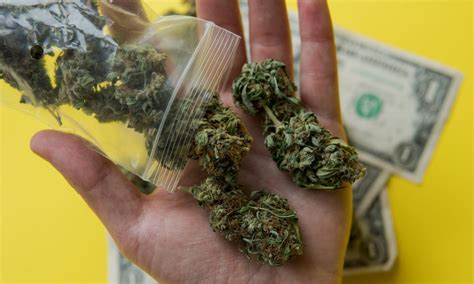 How Much Does Weed Cost? - The Fresh Toast