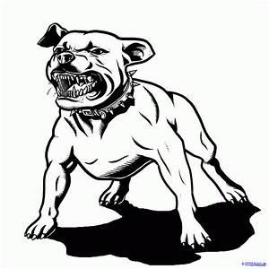 Drawn face pitbull - Pencil and in color drawn face pitbull