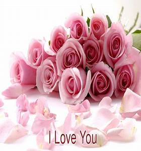 Pink Rose Love. Free I Love You eCards, Greeting Cards ...