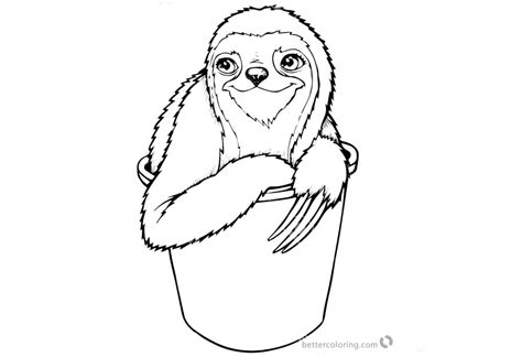 sloth coloring pages  toed sloth   bucket