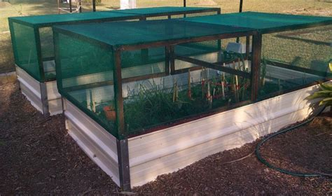 Pest Covers For Raised Garden Beds  Brisbane Local Food