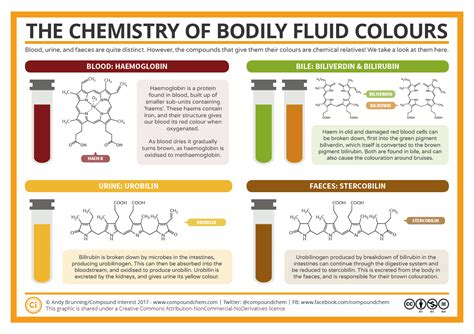 The Chemistry Of The Colours Of Bodily Fluids Redlegagenda