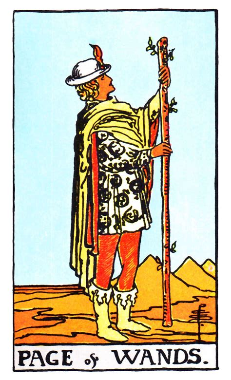 Or does your memory need a quick nudge? Page of Wands Tarot Card Meanings | Free Tarot Tutorials | Rider waite tarot decks, Rider waite ...