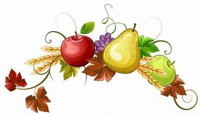Fruit Autumn Clipart Decoration Fruits Stick Transparent