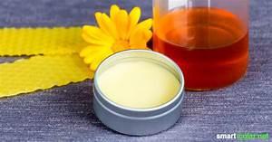 Lippenbalsam Selber Machen : honig lippenpflege rezept f r lippenbalsam mit dem fl ssigen gold ~ Frokenaadalensverden.com Haus und Dekorationen