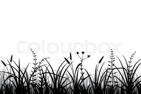Meadow Grass Silhouette Black And ...