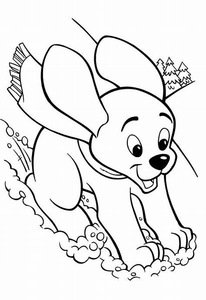 Coloring Pages Puppy Dog Printable Dogs Winter